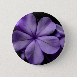 FʟᴏᴡPᴏᴡ | Plumbago Zoom ~ Amethyst 2 Inch Round Button
