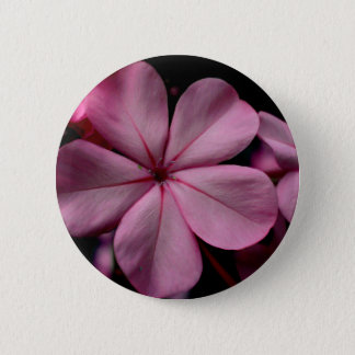 FʟᴏᴡPᴏᴡ | Plumbago Zoom ~ Rose Quartz 2 Inch Round Button
