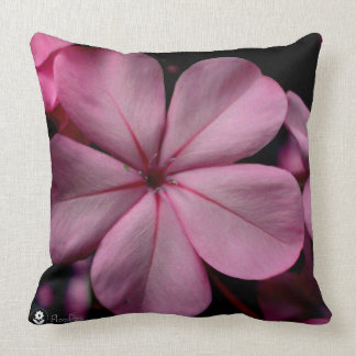 FʟᴏᴡPᴏᴡ | Plumbago Zoom ~ Rose Quartz Throw Pillow