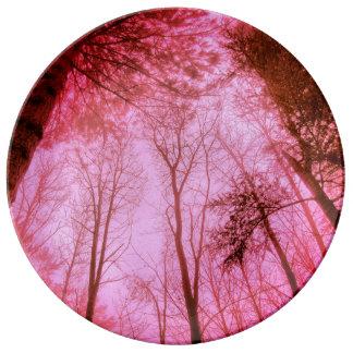 FʟᴏᴡPᴏᴡ | Wood ~ Carmine Plate