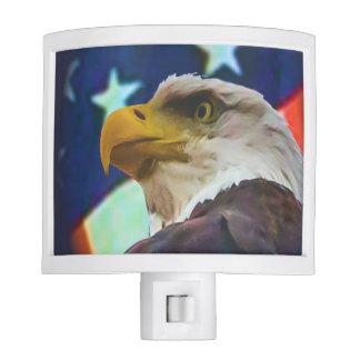 flag and eagle night light