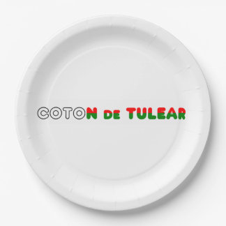 flag in name coton paper plate