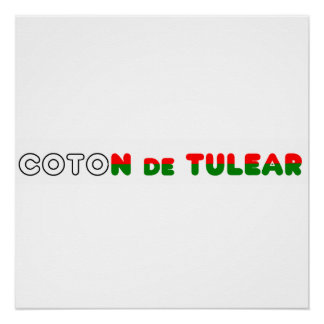 flag in name coton poster