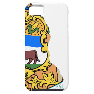 Flag Map Of Delaware iPhone 5 Cover