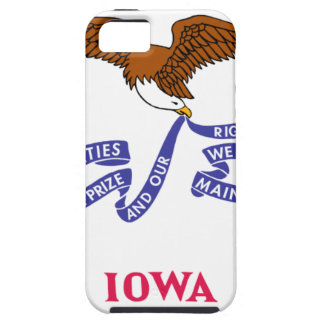 Flag Map Of Iowa iPhone 5 Covers