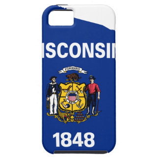 Flag Map Of Wisconsin iPhone 5 Cases