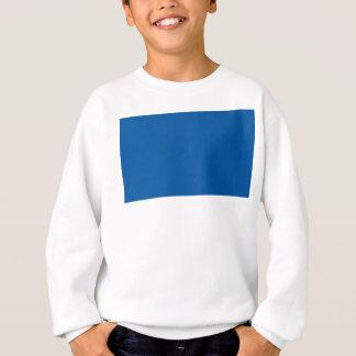 Flag of Assen Sweatshirt