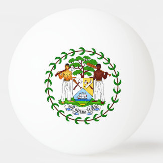 Flag of Belize Ping Pong Ball
