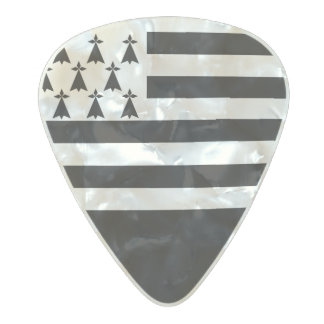 Flag of Brittany Guitar Picks Pearl Celluloid Guitar Pick