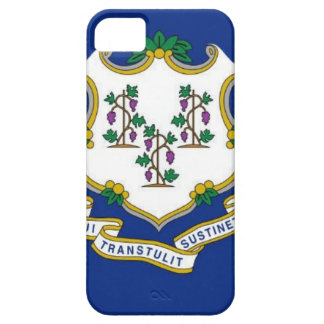 Flag Of Connecticut iPhone 5 Covers