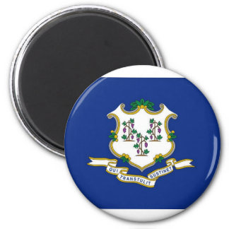 Flag Of Connecticut Magnet