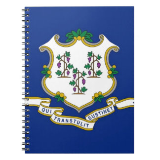 Flag Of Connecticut Notebooks