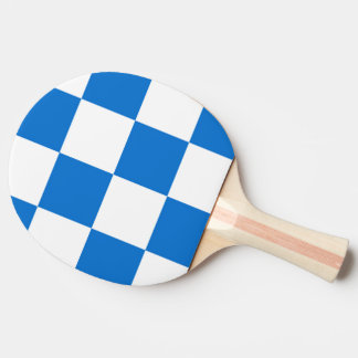 Flag of Dalfsen Ping Pong Paddle