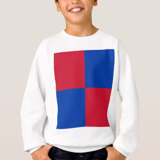Flag of Harenkarspel Sweatshirt