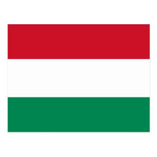 Flag of Hungary Postcard