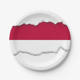 Flag of Indonesia Paper Plate
