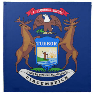 Flag Of Michigan Napkin