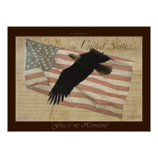 FLAG OF MY HOMELAND ~Bald Eagle US Flag Poster