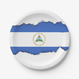 Flag of Nicaragua 7 Inch Paper Plate
