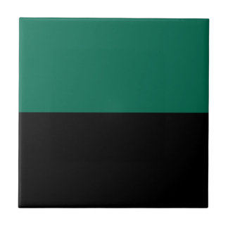 Flag of Texel Tile