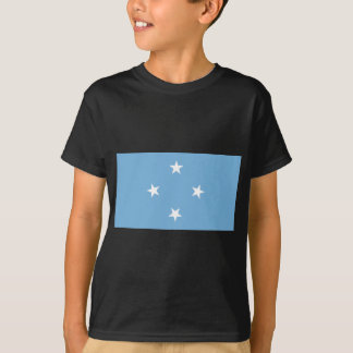 Flag_of_the_Federated_States_of_Micronesia. T-Shirt