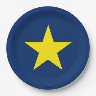 Flag of the Republic of Texas 9 Inch Paper Plate