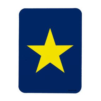Flag of the Republic of Texas Rectangular Photo Magnet
