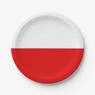 Flag of Thuringia Paper Plate