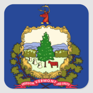 Flag Of Vermont Square Sticker