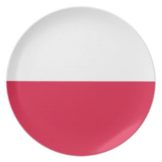 Flaga Polski - Polish Flag Party Plate