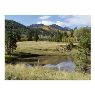 Flagstaff Locket Meadow Postcard
