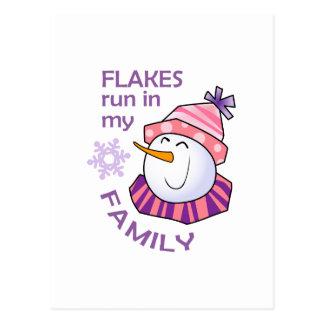 FLAKES RUN IN MY FAMILY POSTCARD