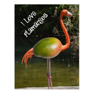 Flamango Postcard