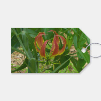 flame lily gift tag
