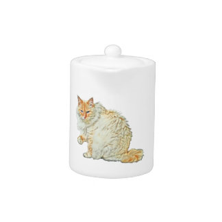 Flame point siamese cat 2