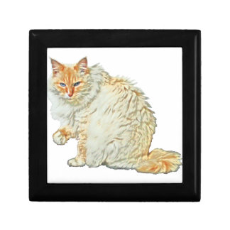 Flame point siamese cat 2 gift box