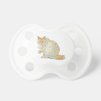 Flame point siamese cat 2 pacifier