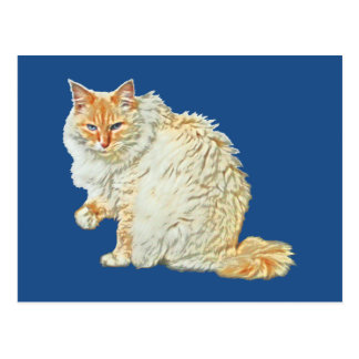 Flame point siamese cat 2 postcard