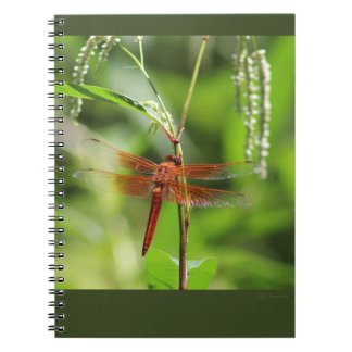 Flame Skimmer Spiral Notebook
