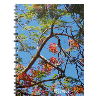 Flame Tree Notebooks