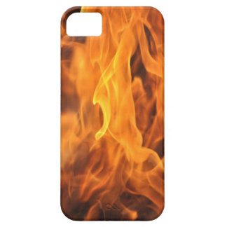 Flames - Too Hot to Handle iPhone 5 Cases