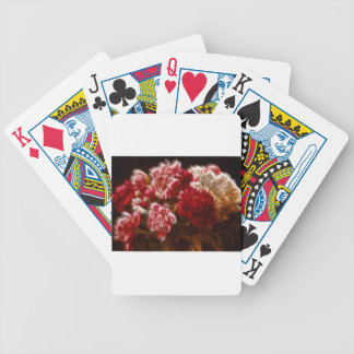 Flaming Red Peony Flower Bouquet Bicycle Playing Cards