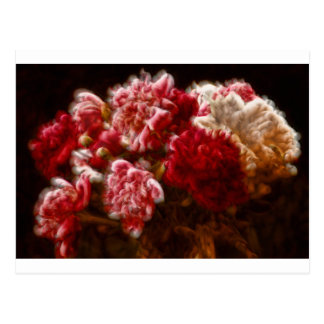 Flaming Red Peony Flower Bouquet Postcard