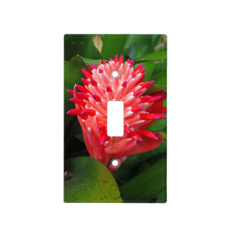 Flaming Torch Bromeliad Light Switch Cover