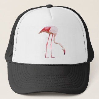 Flamingo_2 Trucker Hat