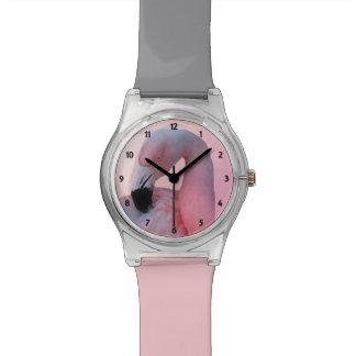 Flamingo and Beach Watch