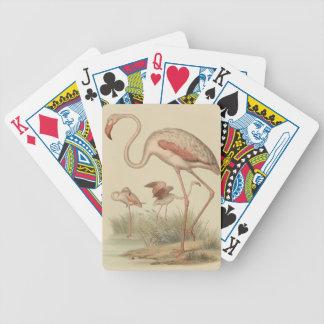 Flamingo bingo bicycle playing cards