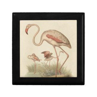 Flamingo bingo gift box