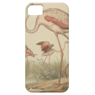 Flamingo bingo iPhone 5 case