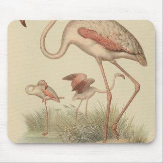 Flamingo bingo mouse pad